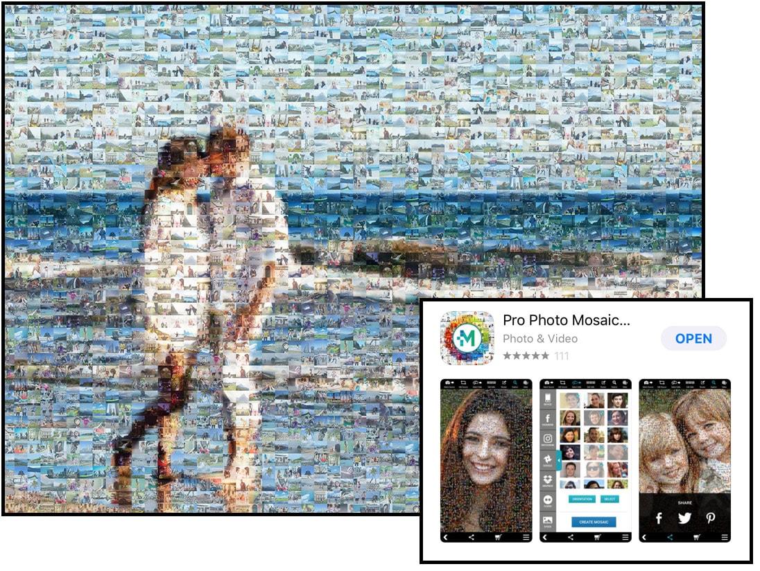 Risultati immagini per pro photo mosaic creator app